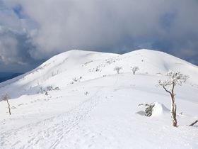 山上に広がる大雪原!滋賀「霊仙山」の雪山世界が圧倒的