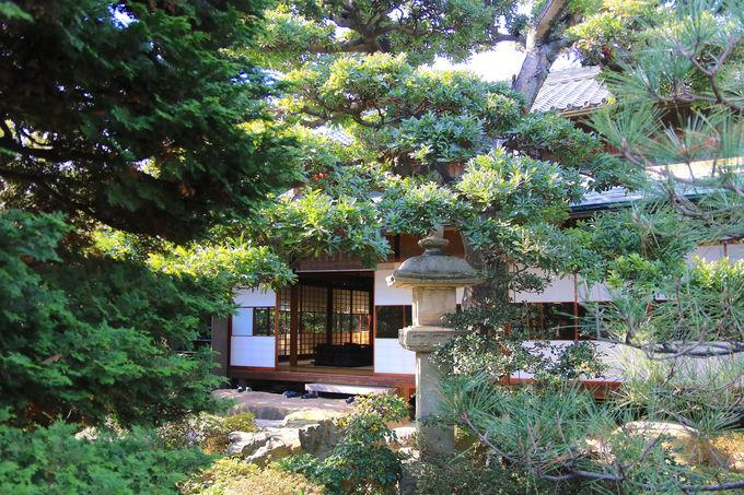 実は奥に圧倒的な庭園も!「竹田家住宅」は隠れた穴場名所