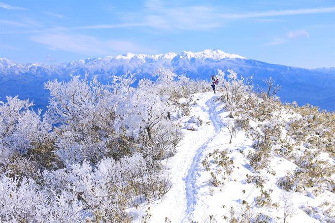 日本屈指の美しさを誇る!冬の「猪臥山」雪山登山