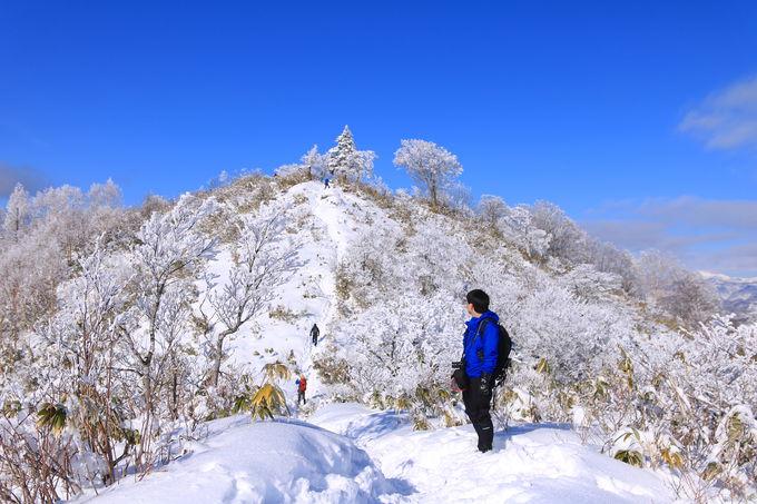 初心者でも登りやすい!飛騨高山・冬の名山「猪臥山」