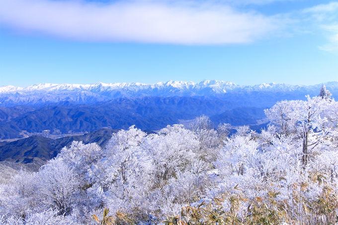 山頂は360度の絶景!飛騨高山・冬の「猪臥山」は美しすぎる霧氷の山