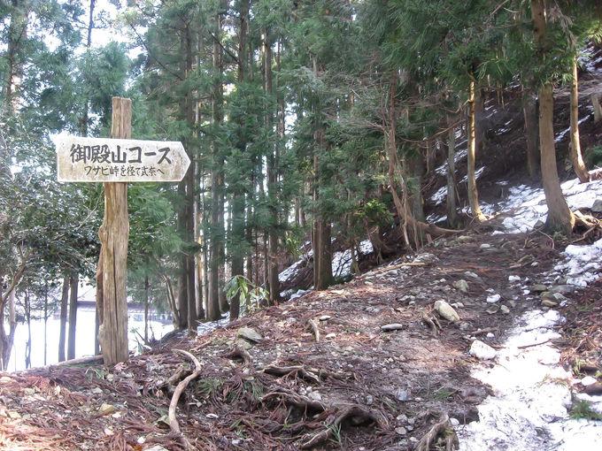 鯖街道からアプローチ!「坊村登山口」樹林帯の急登を行く