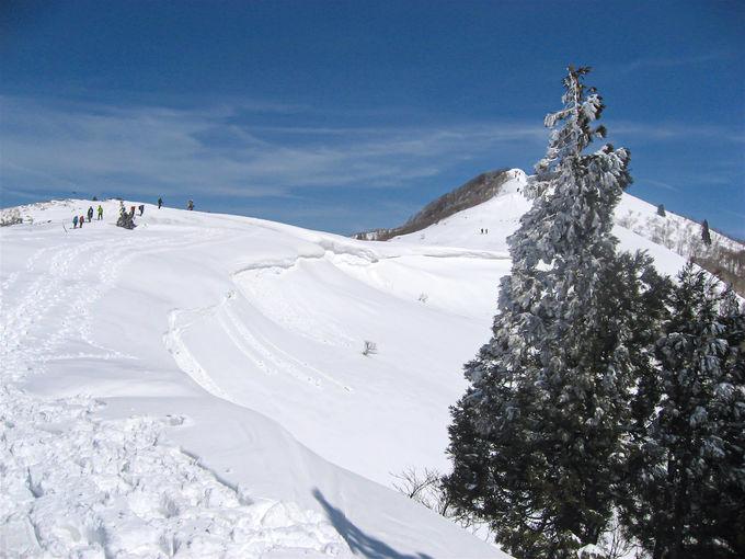 関西を代表する冬の名山「武奈ヶ岳」西南稜から琵琶湖の絶景