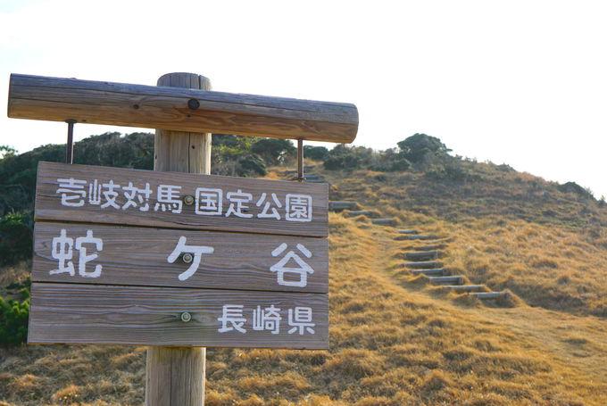 「蛇ヶ谷」散策で冒険のクライマックス