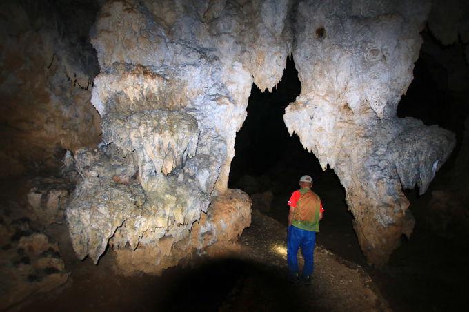 「ヤジャーガマ」洞窟探検で出会う!久米島の地下世界