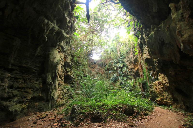 久米島の地中世界「ヤジャーガマ」未知の洞窟探検アドベンチャー
