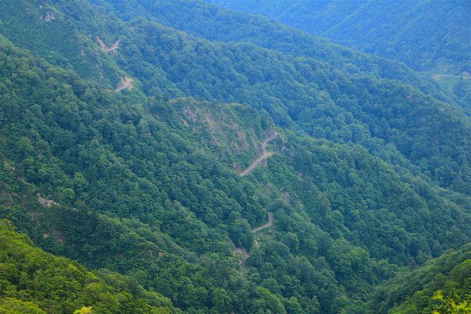 秘境感が半端ない!美濃〜越前の最難関ルート「林道冠山線」