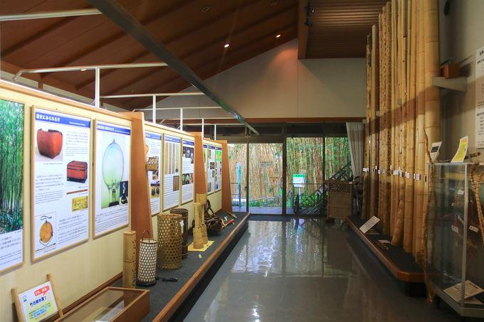 「竹の資料館」で歴史に触れ、情緒豊かな庭園鑑賞