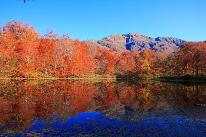 四季折々に変化する「越前大野」は絶景の宝庫!