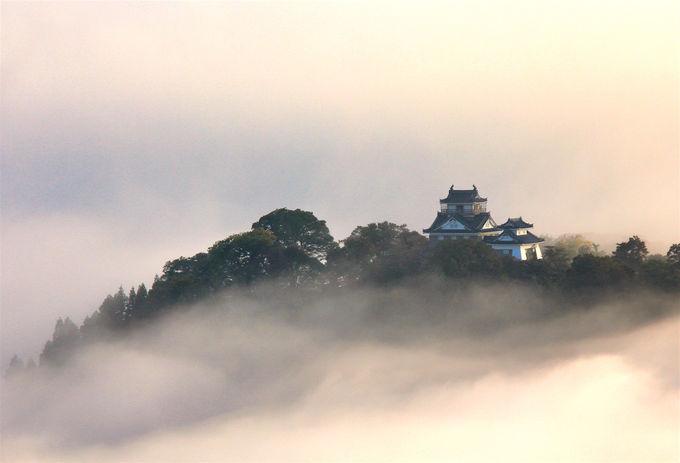 400年以上続く!「大野城」の城下町に根付く旅情