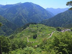 緑あふれる絶景を巡る!初夏の伊吹山を満喫する秘境ドライブ旅