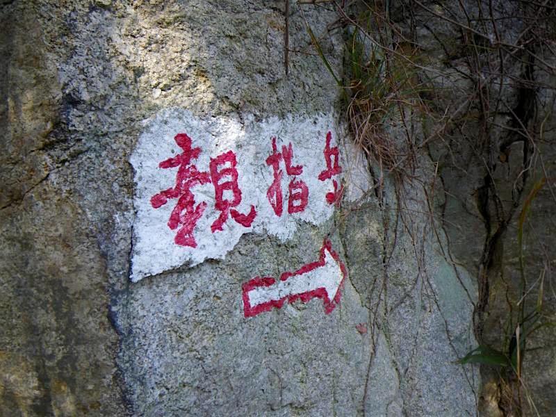 ロープで岩場登りが楽しい!絶景の「親指平」へ