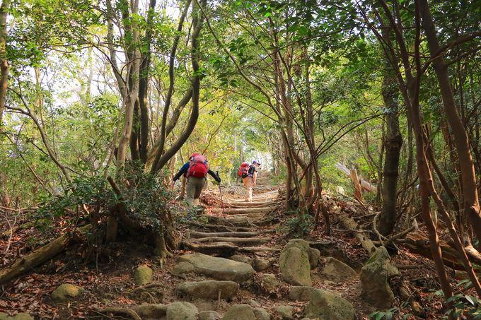 景色変化と登り応え抜群!3部構成の雲興寺ロングルート