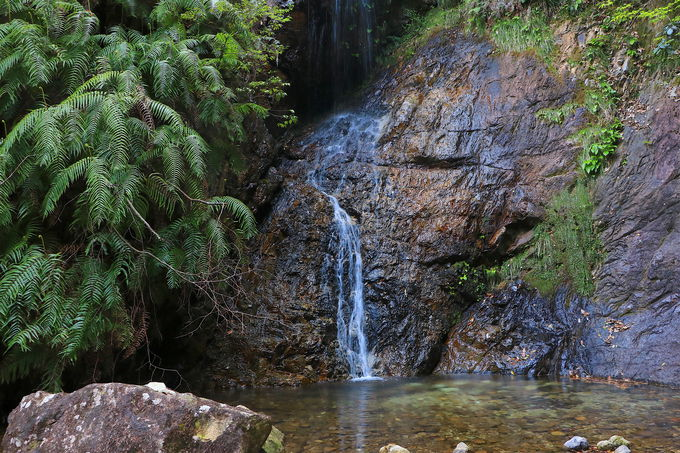 下石の滝を通過し、滝尾根経由ルート(初級)