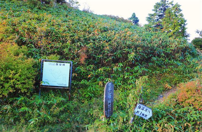 入り口は神坂峠!「恵那山」登山屈指の名ルート