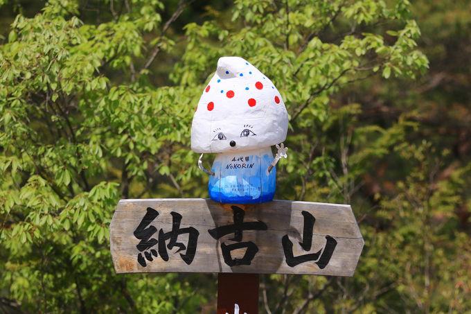 ノコリンに会える「納古山」山頂には360度の絶景も!