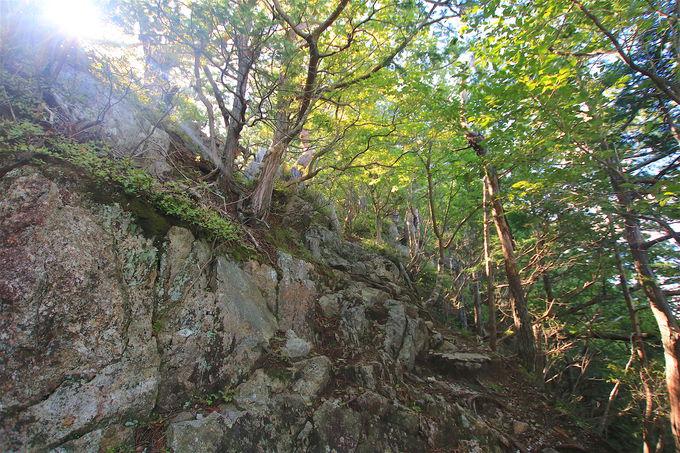 自然豊かな京都を一望!京都の奥座敷にそびえる「金毘羅山」