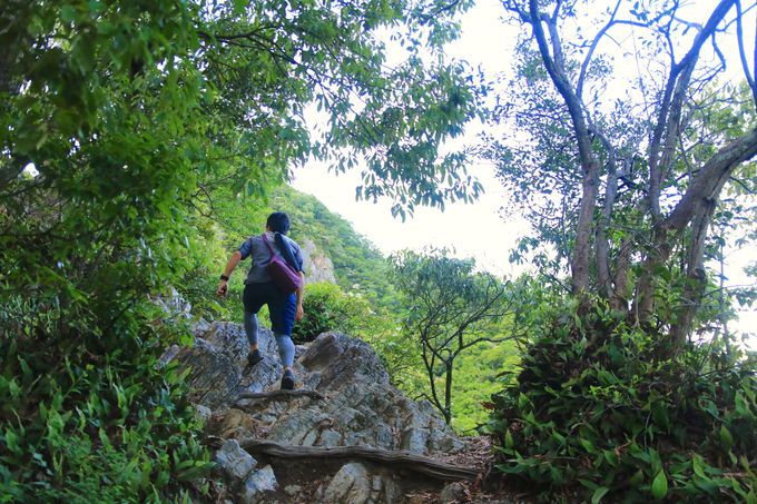手軽で面白い「東坂コース」!途中には野趣あふれる岩場も