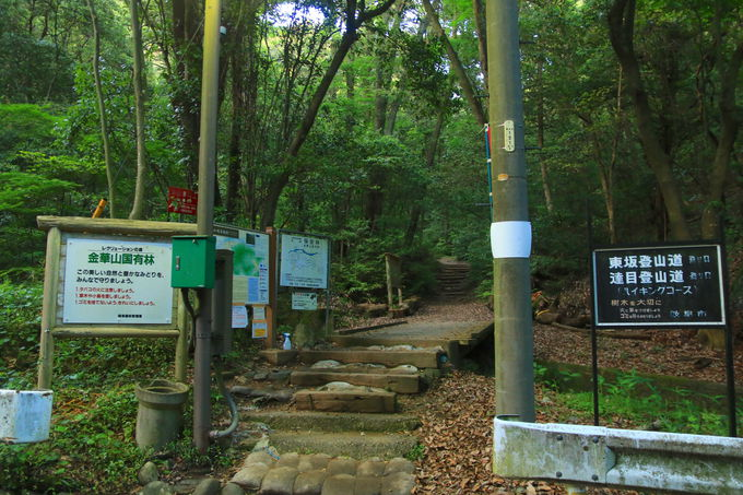 日没間際に登山開始!岩戸公園から最短ルートで