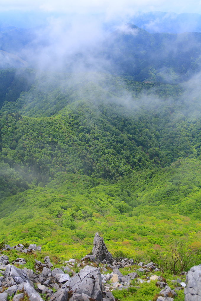 御池岳の山頂周辺を歩こう!二つの断崖絶景が圧巻