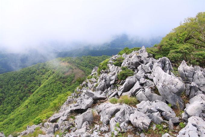 そこはアメージングワールド!御池岳は世界に通用する絶景