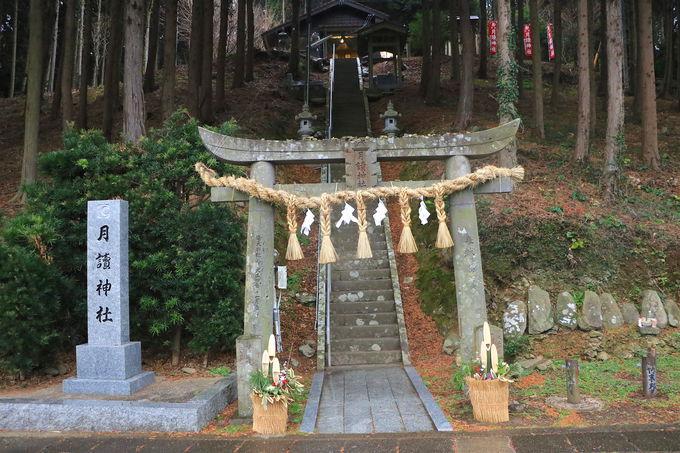 全国の月讀神社の総本社!神の島・壱岐に座す「月讀神社」