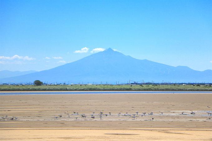 グルメを食べた後に、津軽半島ならではの絶景も楽しめる!
