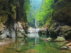 三重にある日本三大峡谷「大杉谷」日本屈指の秘境登山道へ挑め!