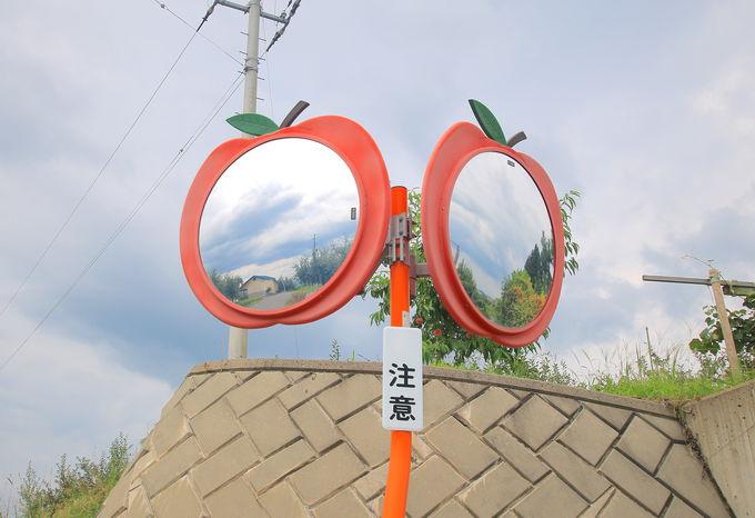 弘前市りんご園で「林檎サンデー」と岩木山の絶景を堪能