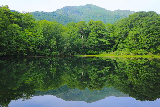 霊峰に抱かれる秘境「刈込池」を見に行こう!