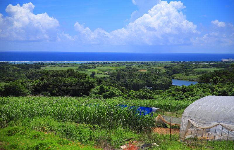 沖縄の原風景が残る!久米島「山里地区」周辺の楽しみ方