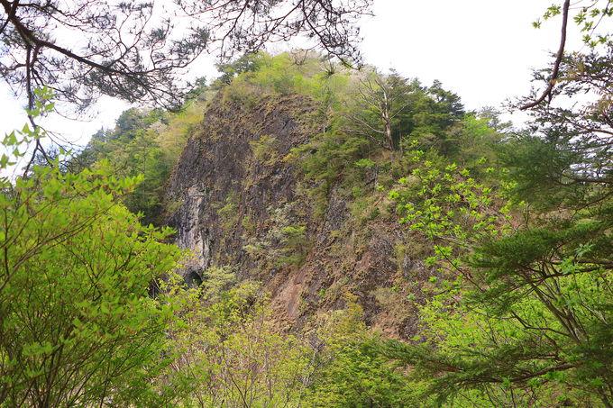 アドベンチャーな東海道最難所!岩古谷山から南部縦走