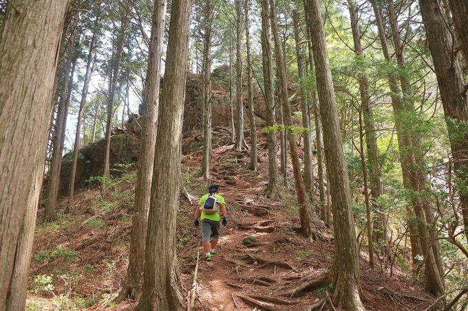 奥三河はポテンシャルがすごい!愛知の名山へ登りに行こう