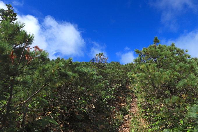 まるで高山!?屈斜路湖畔の「藻琴山」へ絶景ハイキング