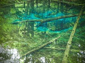 北海道・摩周湖が誇る神秘の絶景!「神の子池」に見る宇宙