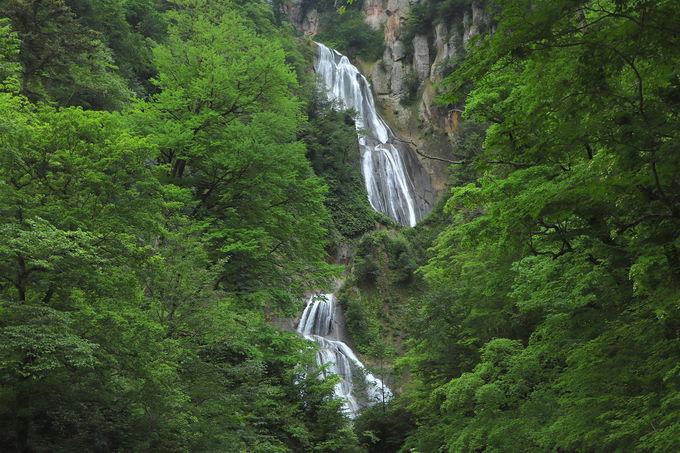 白く絹のように零れ落ちる!日本の滝百選「羽衣の滝」が美しい