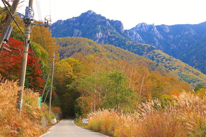 瑞牆山麓の秘境道路!クリスタルラインと本谷渓流の紅葉