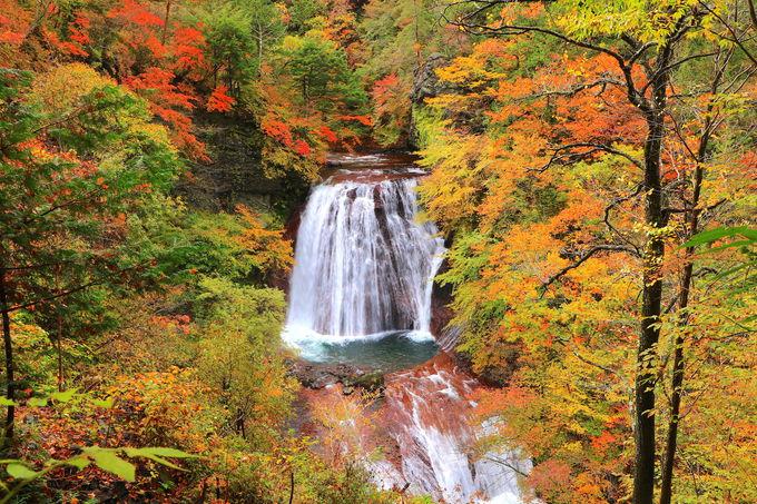 自然の中へ没入「王滝」で紅葉と轟音に包まれよう!