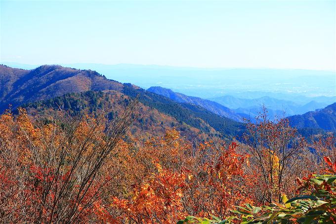 紅葉と大展望に癒される!秋の「高賀山」登山