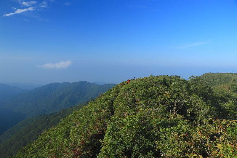 サクッと美しい緑の稜線へ!滋賀県「金糞岳」へ爽快ハイキング