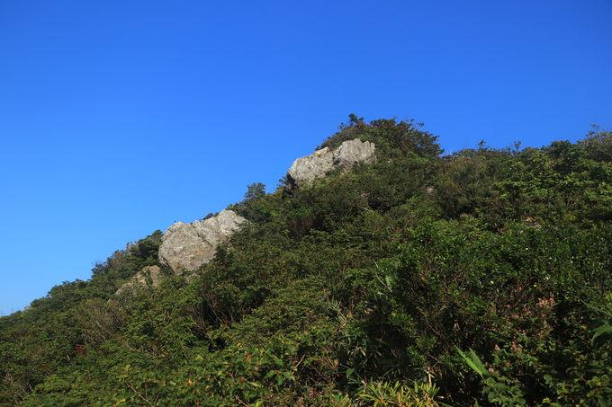 手軽かつ山の魅力を満喫できる「金糞岳」ハイキング