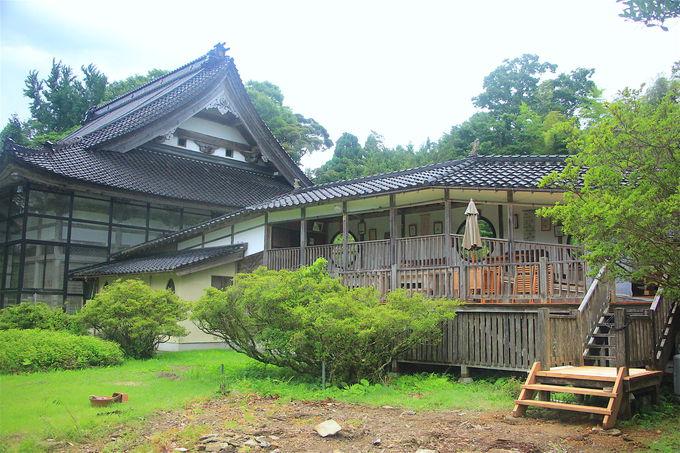境内でほっこり郷土料理!「慶願寺オープンカフェ木の音」