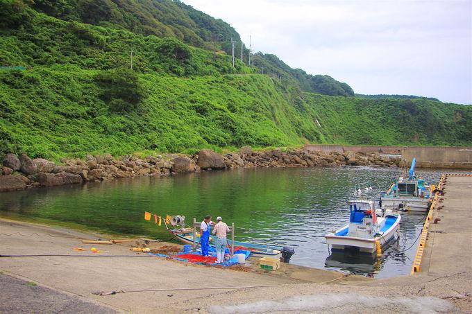 石川県の各自治体でも独自の観光支援策を実施(2)