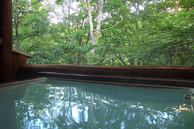 五感で感じる乗鞍の大自然!絶景の源泉掛け流し露天風呂