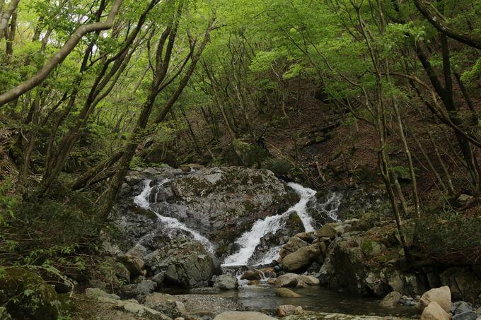 ロープウェイから国見峠を経て、御在所岳の北西・上水晶谷へ!