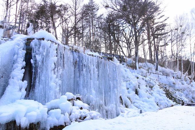 高山南部・御嶽山麓に抱かれる「氷点下の森」