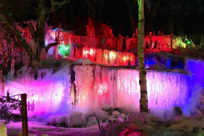 ライトアップされた「氷点下の森」ただ美しく幻想的
