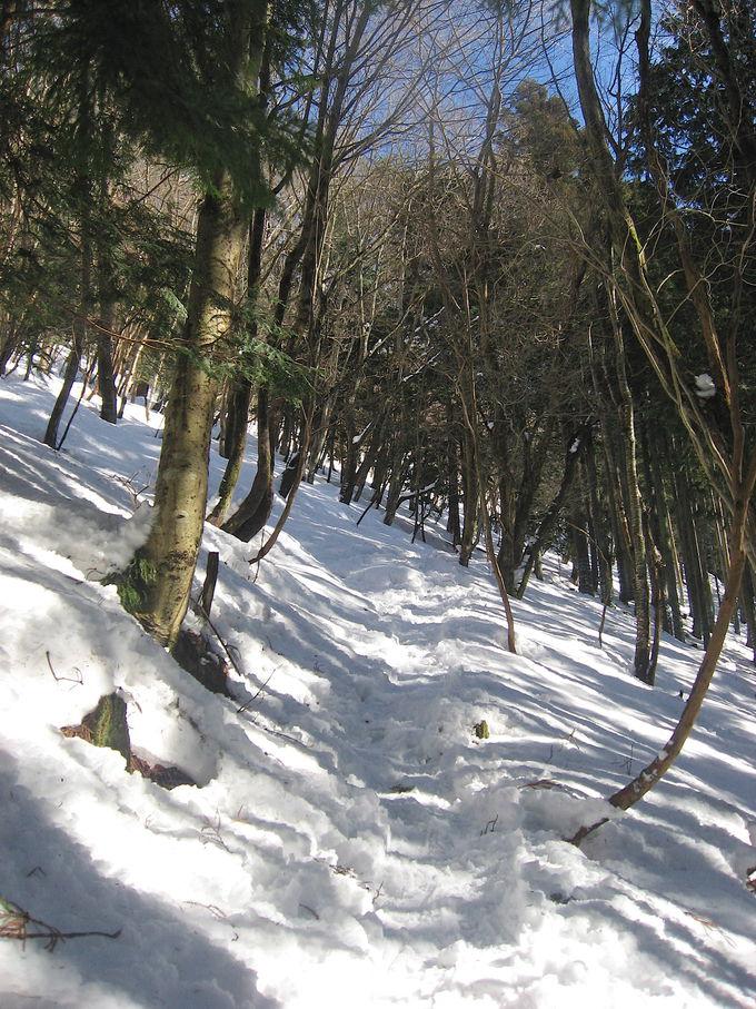 雪山初心者にオススメ!冬の比良山地「権現山」