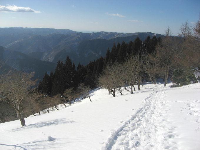 アラキ峠を越え雪山ならではの趣を堪能!