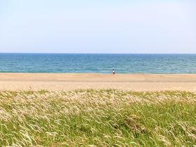 こんなに綺麗な海がある!愛知「渥美半島」の絶景スポット4選